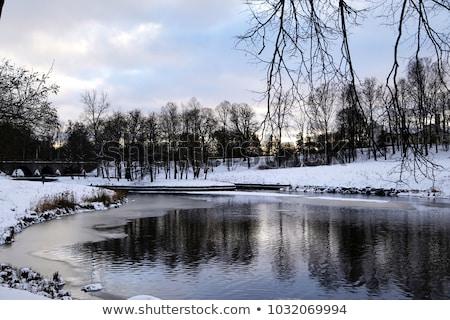 Winter  sunny landscape in Pavlovsk  garden. Stock photo © Pilgrimego