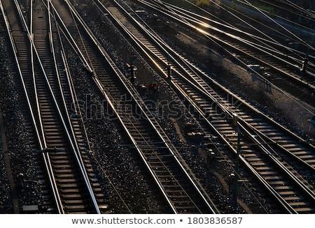 Ferrovia seguir estação de trem verde floresta madeira Foto stock © compuinfoto