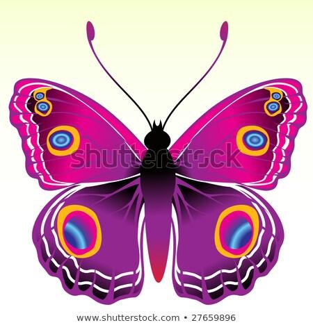 бабочка · силуэта · набор · коллекция · бабочки - Сток-фото © oblachko