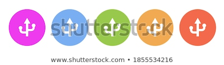 Usb teken violet vector icon ontwerp Stockfoto © rizwanali3d