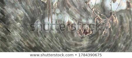 streszczenie · miękkie · jasnoniebieski · zamazany · circles · mały - zdjęcia stock © julietphotography