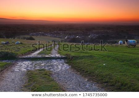 Yorkshire sunset Stock photo © chris2766
