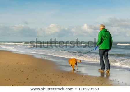 âgées · homme · chien · marche · hiver · ciel - photo stock © Paha_L