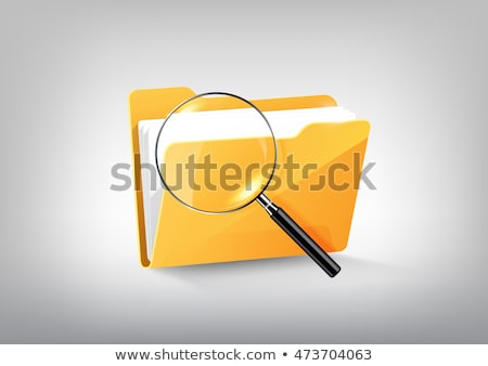 file folder and magnifying glass   web icon stock photo © djdarkflower