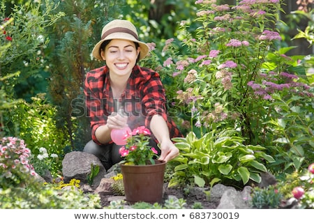 Beautiful happy young woman gardener holding water sprayer in greenhouse Stock photo © deandrobot
