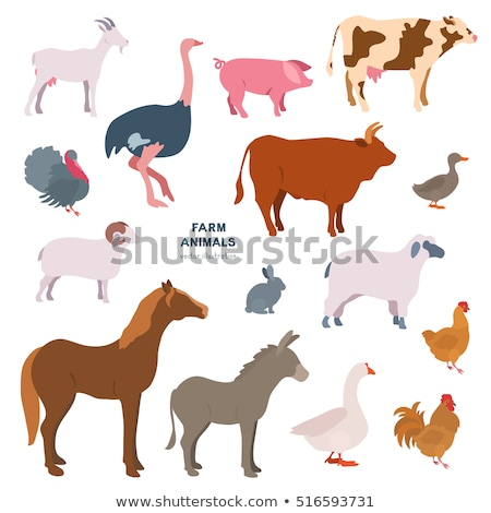 domestic farm animals flat silhouettes vector icons stock photo © vectorikart