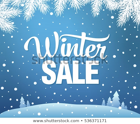 snow branch winter sale stock photo © romvo