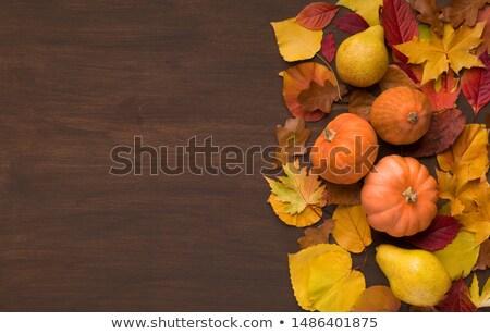 Bunch of pumpkins Stock photo © njnightsky