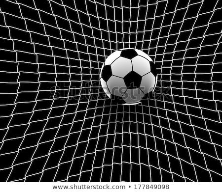Piłka nożna powrót netto stadion trawy człowiek Zdjęcia stock © wavebreak_media