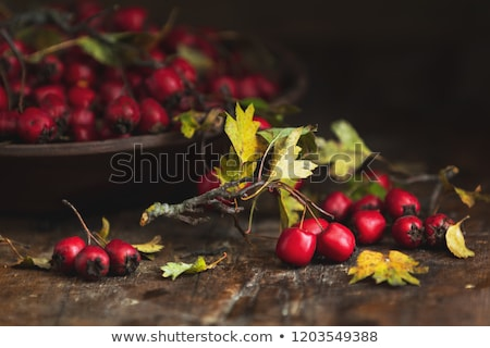 Stock photo: Autumn harvest Hawthorn berry with leaves in bowl on a wooden ta