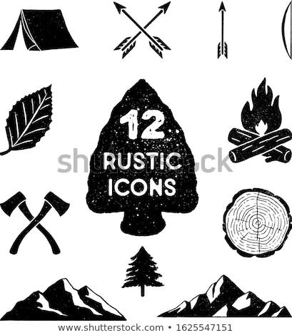 ヴィンテージ 手描き キャンプ 斧 シルエット スケッチ ストックフォト © JeksonGraphics