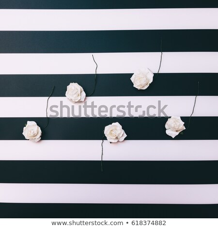 Plastic white stripes background Stock photo © magraphics