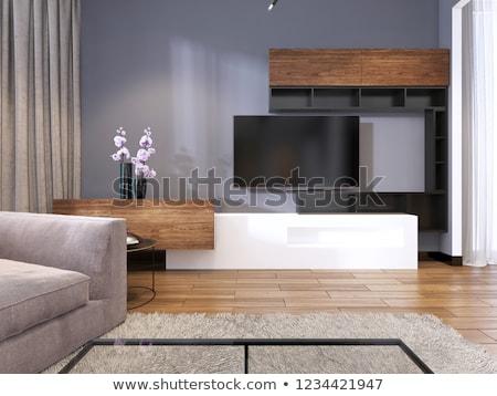 LCD tv nagy faliszekrény fehér nagy Stock fotó © magraphics