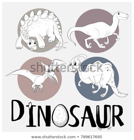 Four types of dinosaurs on white poster Stock photo © colematt