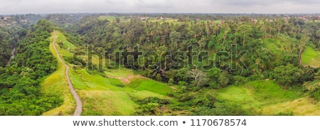 Aerial picture of Campuhan Ridge Walk , Scenic Green Valley in Ubud Bali. Photo from the drone Stock photo © galitskaya