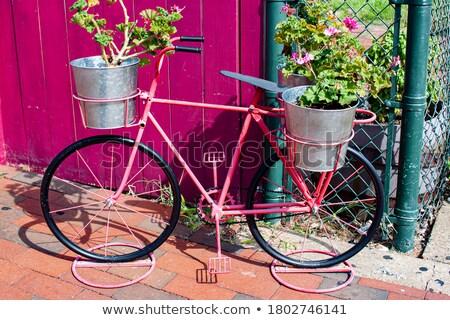 bloempot · vorm · oude · houten · emmer · kleurrijk - stockfoto © Lady-Luck