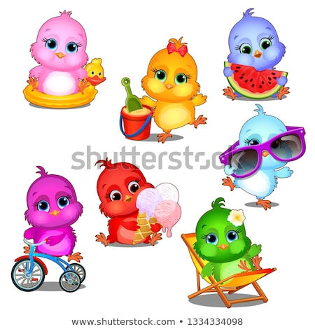 A set of cute little multicolored chicks having fun isolated on white background. Vector cartoon clo Stock photo © Lady-Luck