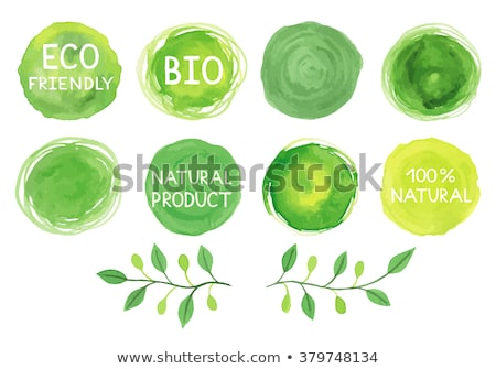 Vegan Food Organic Logo, Green Branch and Leaves Stock photo © robuart