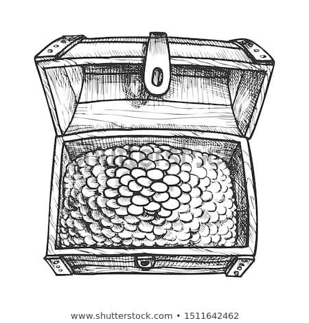 Treasure Chest Filled Golden Coins Ink Vector Stock photo © pikepicture