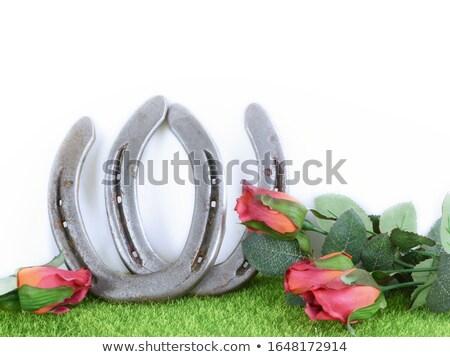 Hoefijzer kunstgras goede geluk gras groene Stockfoto © dolgachov