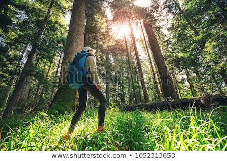 Woman in tropical vacation walking through the jungle Stock photo © Kzenon