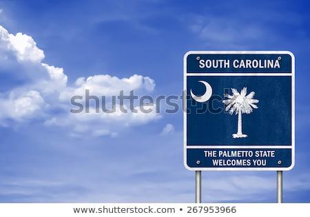 Carolina · do · Norte · sinal · da · estrada · verde · EUA · nuvem · rua - foto stock © kbuntu