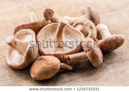 Shiitake mushrooms Stock photo © elenaphoto