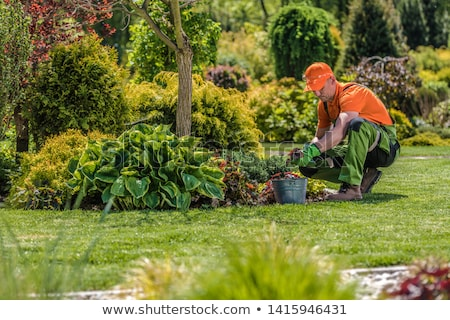 Landscape image of worker Stock photo © photography33