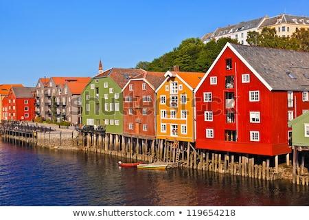 coastline with houses in norway Stock photo © gewoldi