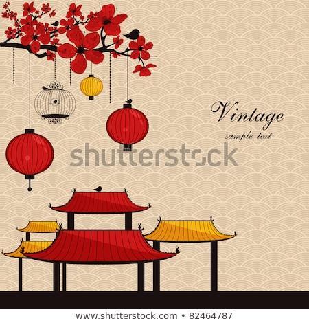 Çin çatı Bina kar arka plan mimari Stok fotoğraf © jakgree_inkliang