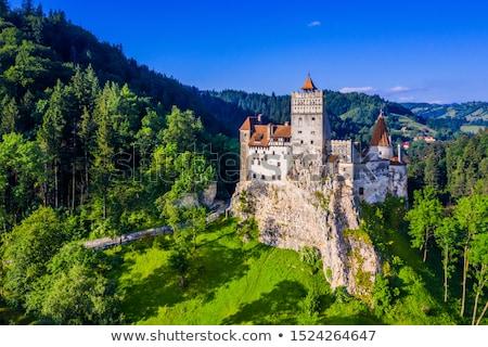 Farelo castelo pormenor montanhas Romênia edifício Foto stock © prill