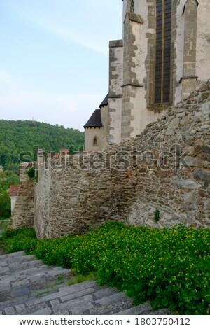 Rovine castello abbassare Austria chiesa edifici Foto d'archivio © phbcz