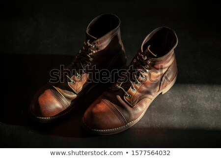 Brown leather men's shoes Stock photo © Hofmeester