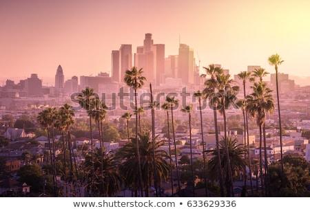 Centrum Los Angeles perspectief wolkenkrabber boom gebouw Stockfoto © meinzahn