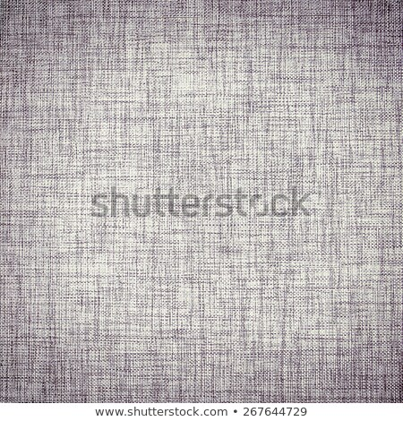 Dark Grunge Textile Canvas Background stock photo © tarczas