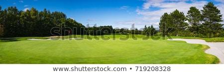 Golf verde sacca da golf erba verde erba sport Foto d'archivio © stokkete