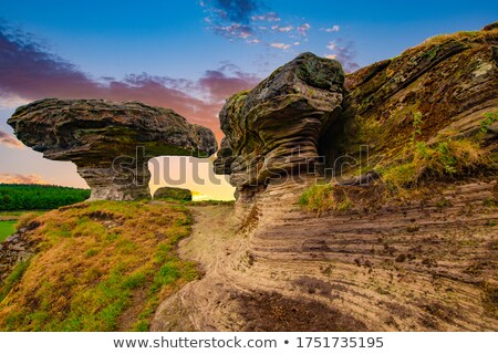 landscape with field, Fife, Scotland Stock photo © phbcz
