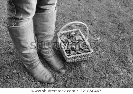 Woman's winter boots next to a basket of autumn leaves stock photo © sarahdoow