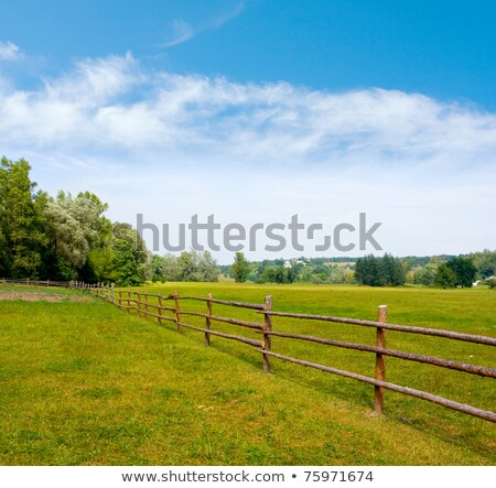 Stock photo: Wooden fence on nice green meadow