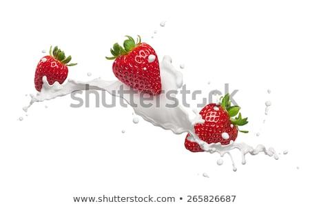 morango · leite · salpico · isolado · branco - foto stock © kubais