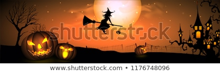 Halloween heks mooie vrouw masker Stockfoto © HASLOO