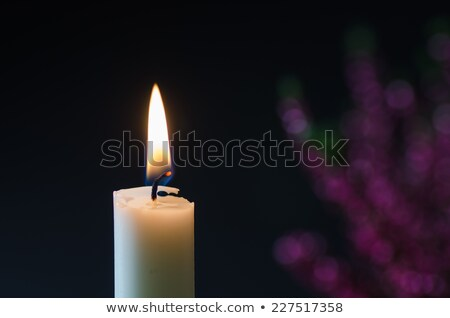 One burning candle at blurred heather Stock photo © olandsfokus