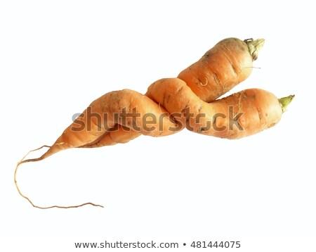 Stock photo: Curve carrots