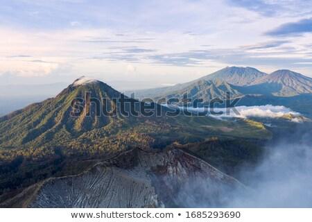 Сток-фото: деревья · тумана · вулкан · Индонезия · утра · Ява