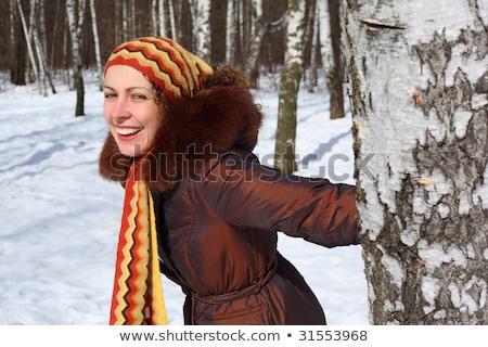 genç · huş · ağacı · orman · kapalı · kar · ağaç - stok fotoğraf © paha_l