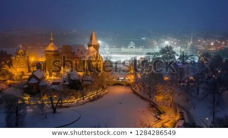 城 1泊 ブダペスト ハンガリー 建物 市 ストックフォト © dinozzaver