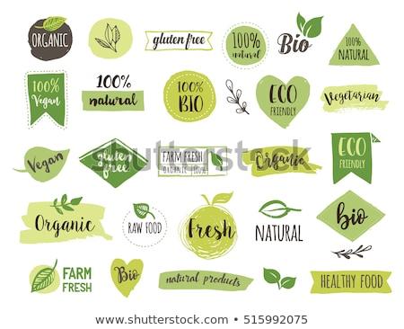 レストラン 緑 ベクトル アイコン デザイン デジタル ストックフォト © rizwanali3d