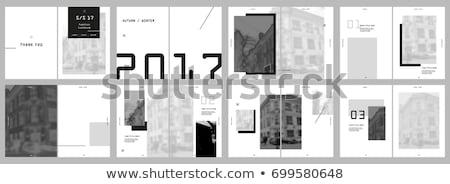 Moderno folheto livro aviador modelo de design vetor Foto stock © orson