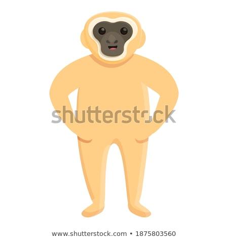 Stockfoto: Bruin · blij · gezicht · illustratie · achtergrond · witte · dier