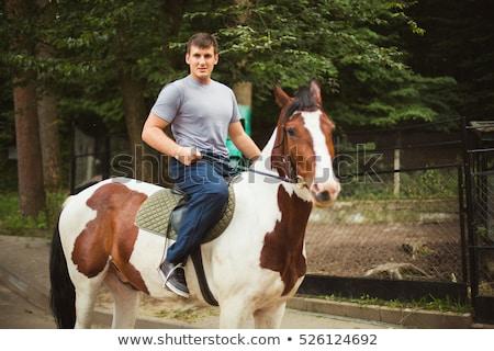 男 · 馬に乗って · 実例 · 日没 · 馬 - ストックフォト © oleksandro